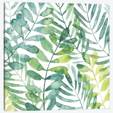 Frond Waltz I Canvas Print #POP646} by Grace Popp Art Print