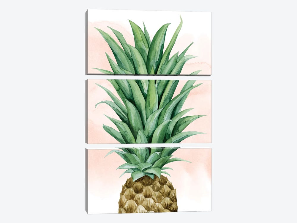 Pineapple On Coral II by Grace Popp 3-piece Canvas Print