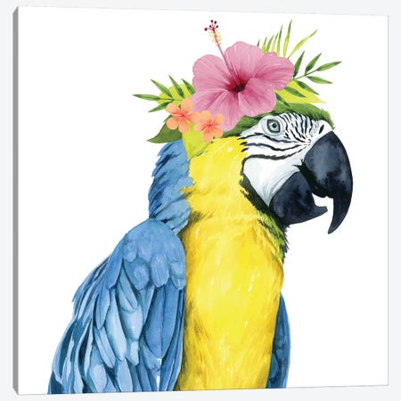 Tropical Halo II Canvas Print #POP707} by Grace Popp Canvas Artwork