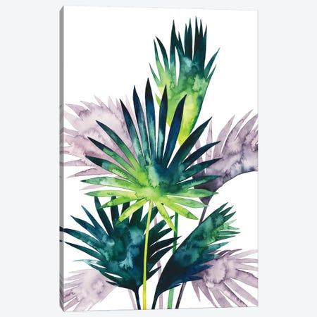 Twilight Palms III Canvas Print #POP716} by Grace Popp Art Print