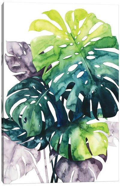 Twilight Palms IV Canvas Art Print