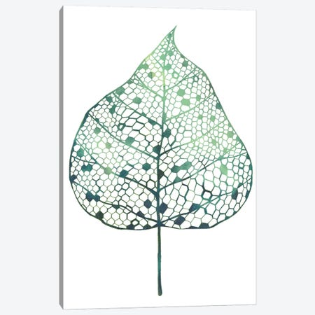 Veiled Leaf I Canvas Print #POP718} by Grace Popp Canvas Artwork