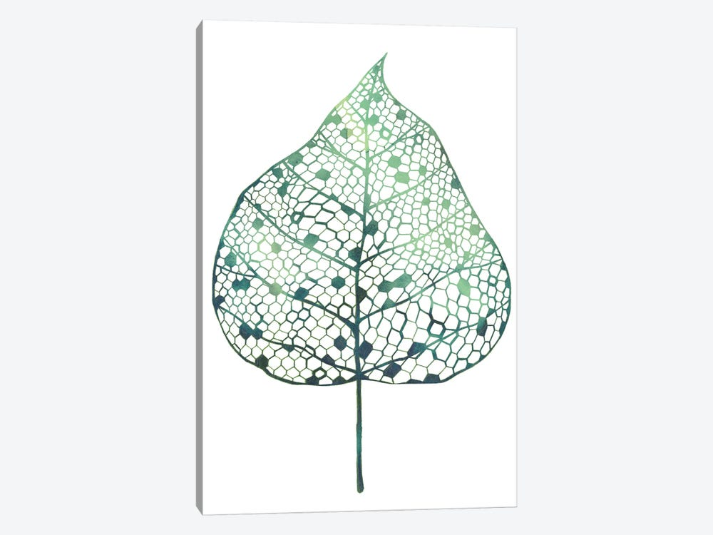 Veiled Leaf I by Grace Popp 1-piece Canvas Wall Art