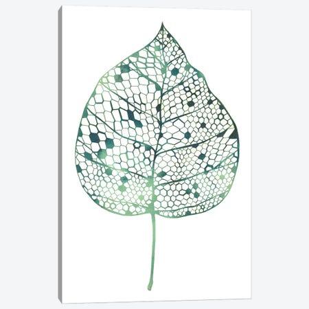Veiled Leaf II Canvas Print #POP719} by Grace Popp Canvas Art
