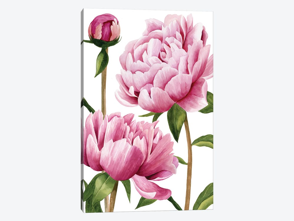 Winsome Peonies I by Grace Popp 1-piece Art Print