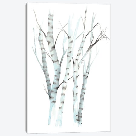 Aquarelle Birches II Canvas Print #POP732} by Grace Popp Canvas Artwork