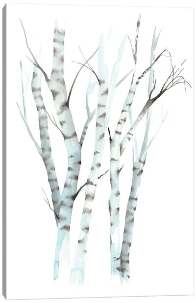 Aquarelle Birches II Canvas Art Print