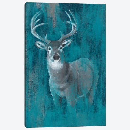 Contemporary White-Tail I Canvas Print #POP748} by Grace Popp Canvas Print