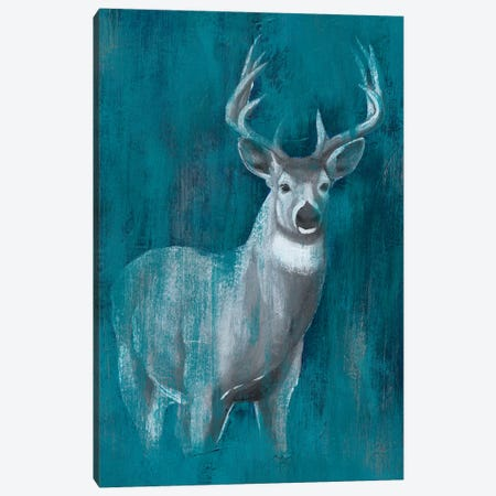 Contemporary White-Tail II Canvas Print #POP749} by Grace Popp Canvas Art Print