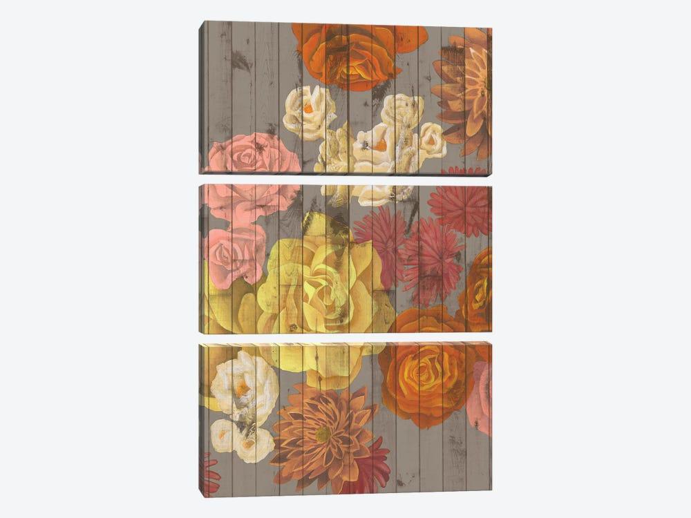 Danza Del Sol II by Grace Popp 3-piece Art Print