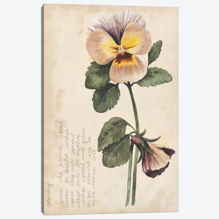 Garden Studies I Canvas Print #POP761} by Grace Popp Canvas Art Print