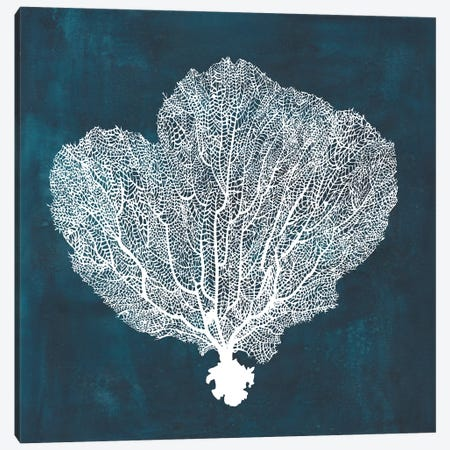 Inverse Sea Fan I Canvas Print #POP765} by Grace Popp Canvas Artwork