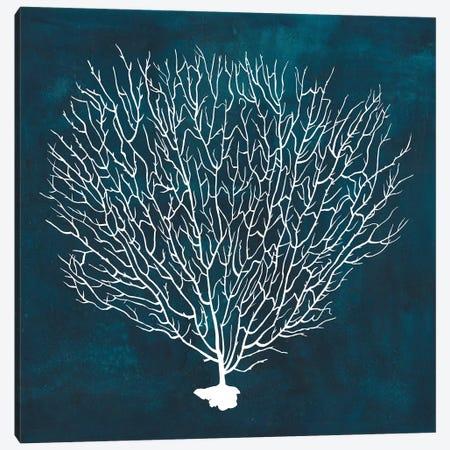 Inverse Sea Fan IV Canvas Print #POP768} by Grace Popp Art Print