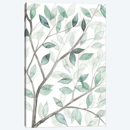 Leaf Lace I Canvas Print #POP76} by Grace Popp Art Print