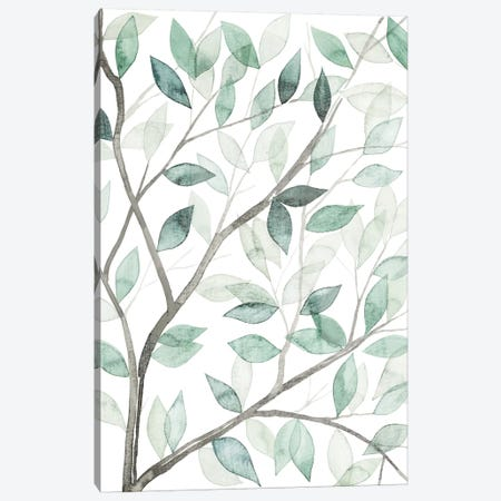 Leaf Lace I Canvas Print #POP76} by Grace Popp Art Print