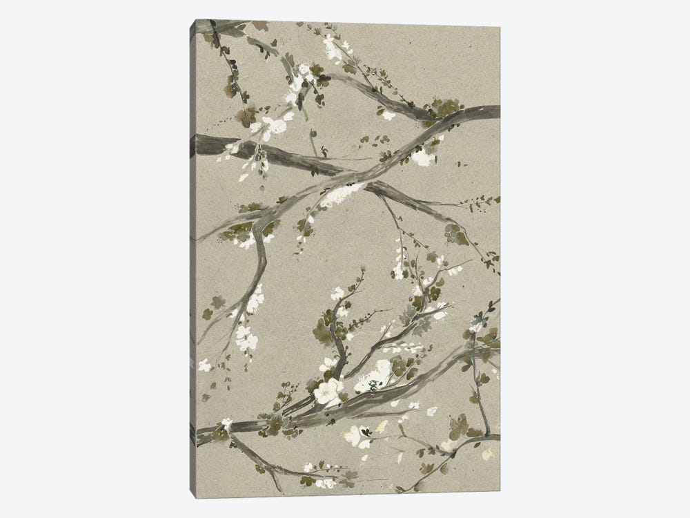 Neutral Cherry Blossoms I by Grace Popp 1-piece Canvas Wall Art