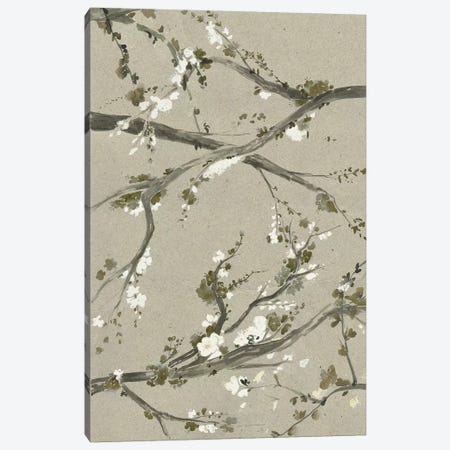 Neutral Cherry Blossoms I Canvas Print #POP781} by Grace Popp Art Print