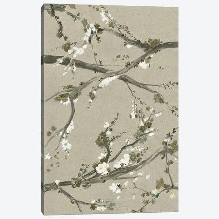 Neutral Cherry Blossoms I Canvas Print #POP781} by Grace Popp Art Print