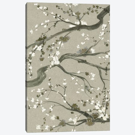 Neutral Cherry Blossoms II Canvas Print #POP782} by Grace Popp Art Print