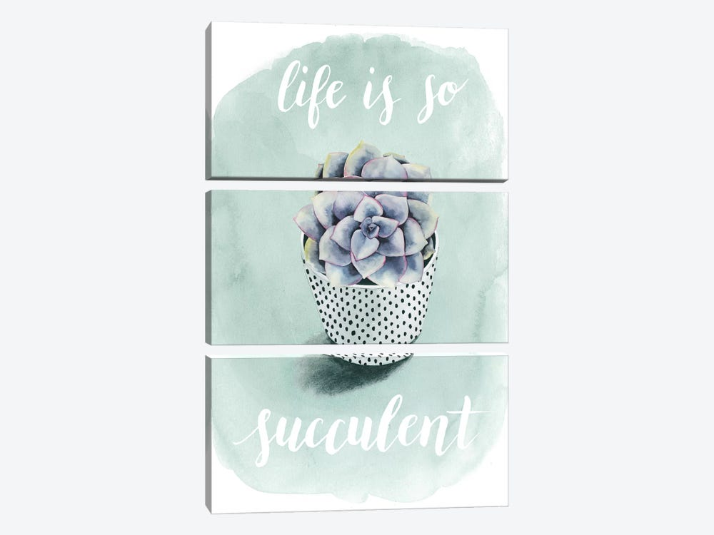 Life Is Succulent I by Grace Popp 3-piece Canvas Art Print