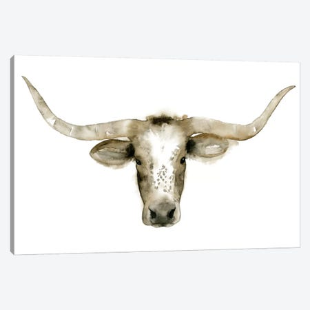 Longhorn Steer I Canvas Print #POP81} by Grace Popp Art Print