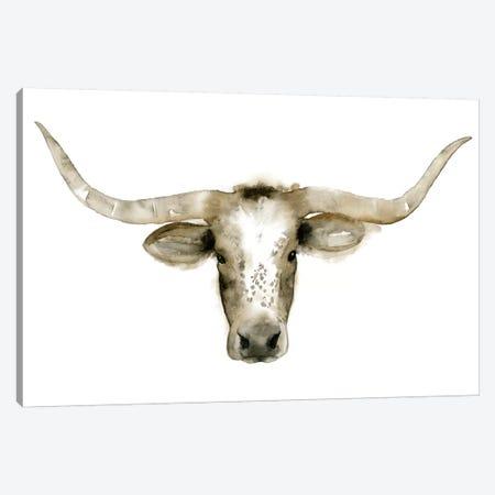 Longhorn Steer I Canvas Print #POP81} by Grace Popp Art Print