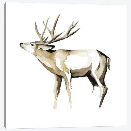 Watercolor Woodland I Canvas Print #POP823} by Grace Popp Canvas Artwork