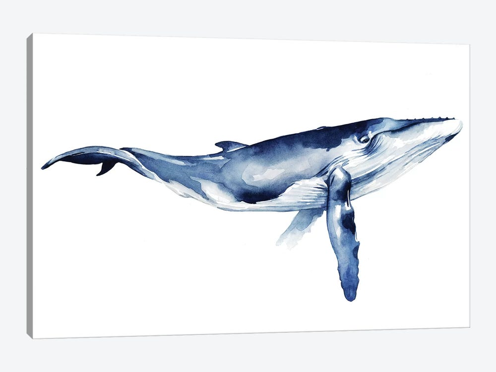 Whale Portrait I by Grace Popp 1-piece Canvas Wall Art