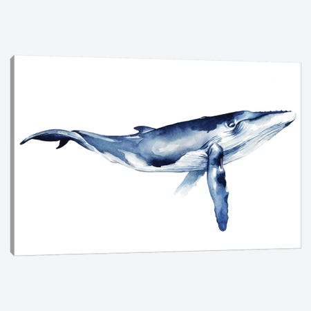 Whale Portrait I 3-Piece Canvas #POP827} by Grace Popp Canvas Art Print