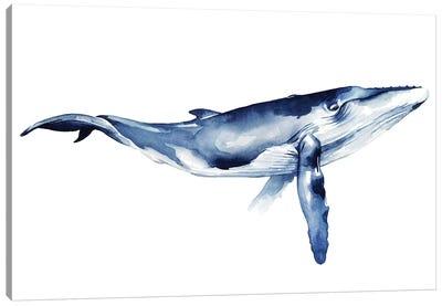 Whale Portrait I Canvas Art Print