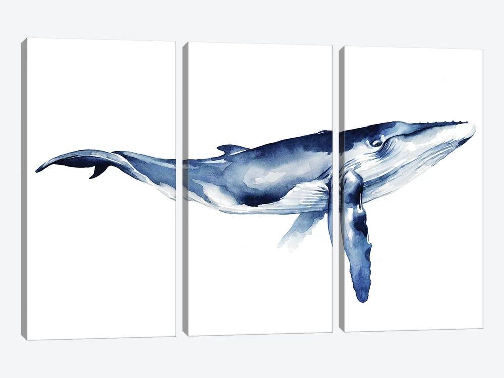 Whale Portrait I by Grace Popp 3-piece Canvas Wall Art