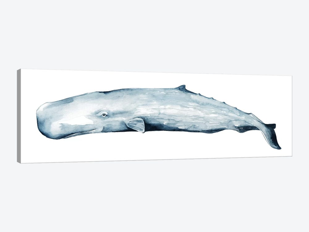 Whale Portrait II by Grace Popp 1-piece Canvas Print