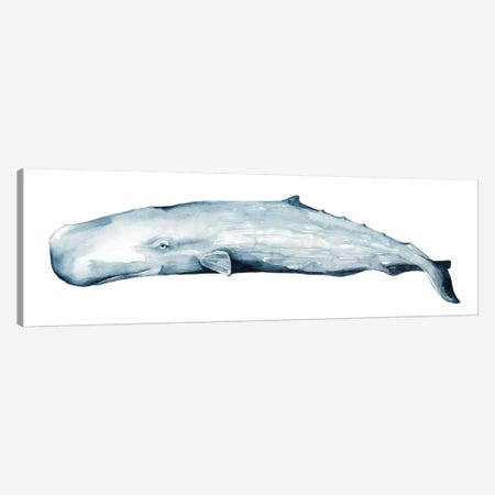 Whale Portrait II Canvas Print #POP828} by Grace Popp Canvas Artwork