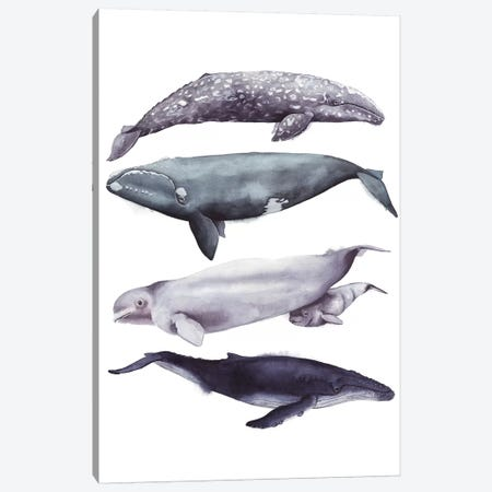 Whale Stack I Canvas Print #POP829} by Grace Popp Canvas Artwork