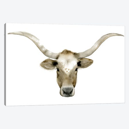 Longhorn Steer II Canvas Print #POP82} by Grace Popp Canvas Art Print