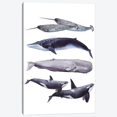 Whale Stack II 3-Piece Canvas #POP830} by Grace Popp Art Print
