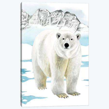 Arctic Animal II Canvas Print #POP844} by Grace Popp Canvas Art Print