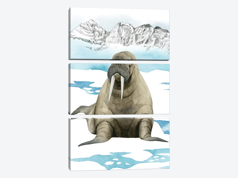 Arctic Animal III 3-piece Canvas Artwork