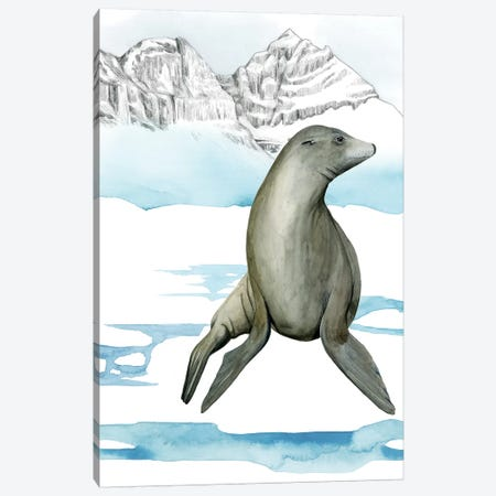 Arctic Animal IV Canvas Print #POP846} by Grace Popp Canvas Art Print