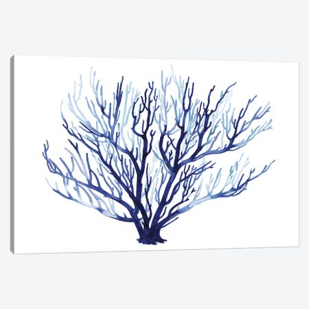 Azure Fan I Canvas Print #POP849} by Grace Popp Canvas Wall Art