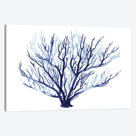 Azure Fan I Canvas Print #POP849} by Grace Popp Canvas Wall Art