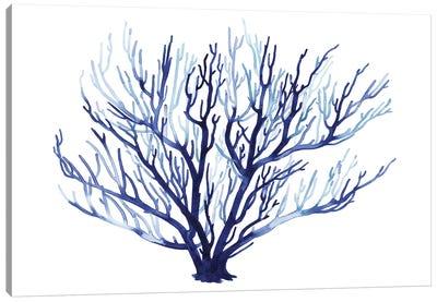 Azure Fan I Canvas Art Print