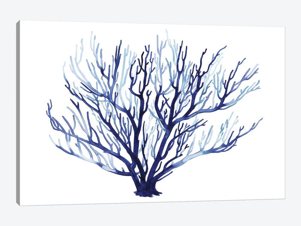 Azure Fan I by Grace Popp 1-piece Canvas Artwork
