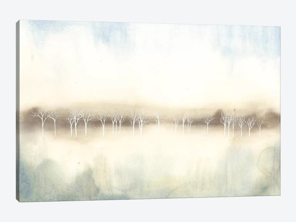 Mid Morning Mist II by Grace Popp 1-piece Canvas Artwork