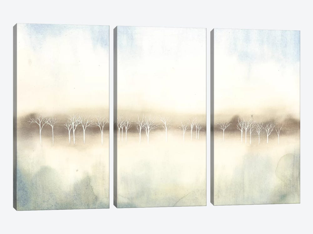 Mid Morning Mist II by Grace Popp 3-piece Canvas Artwork