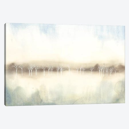 Mid Morning Mist II Canvas Print #POP84} by Grace Popp Canvas Art