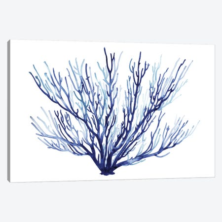 Azure Fan II Canvas Print #POP850} by Grace Popp Canvas Print