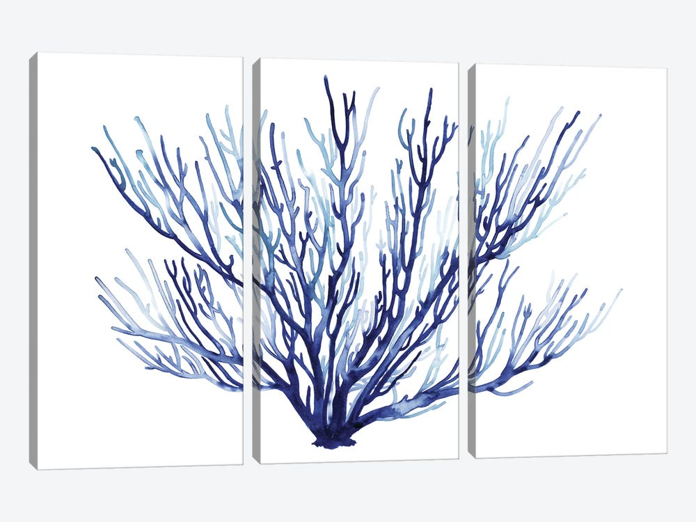 Azure Fan II by Grace Popp 3-piece Canvas Wall Art