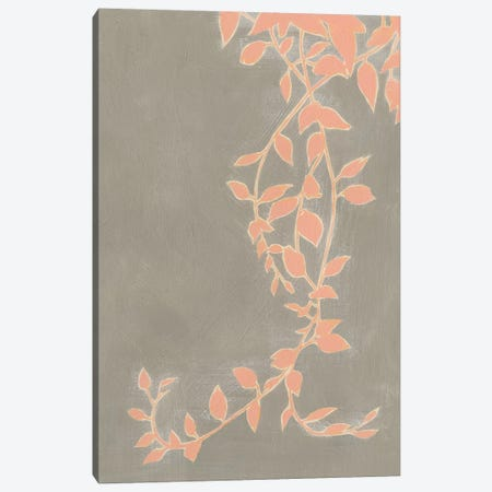 Coral Pothos II Canvas Print #POP867} by Grace Popp Art Print