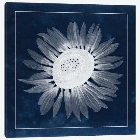 Moon Flower II Canvas Print #POP86} by Grace Popp Canvas Art